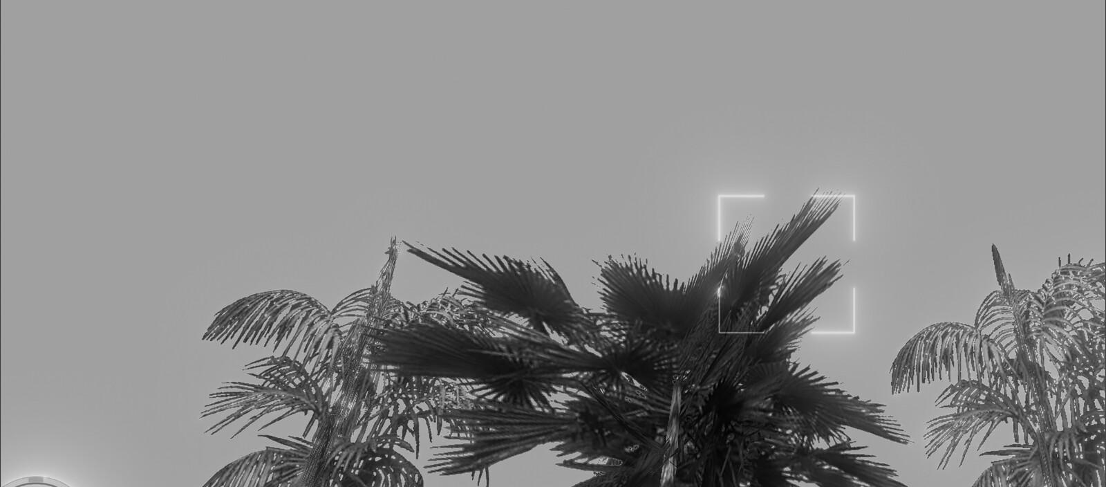 Black&White Vice🤍🎬