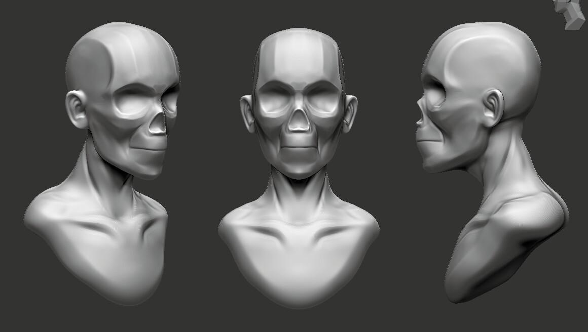 Base Skull Mesh
