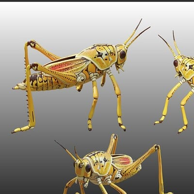 Christine garner grasshopper presentationweb