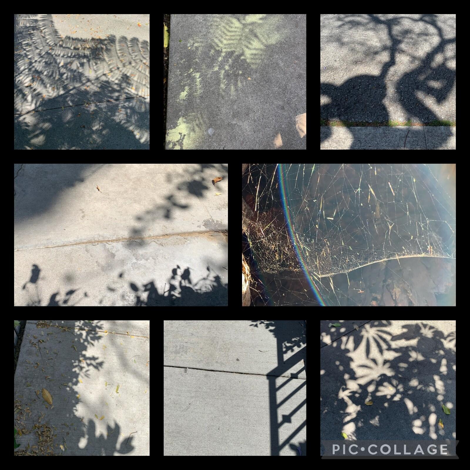 Original photos used