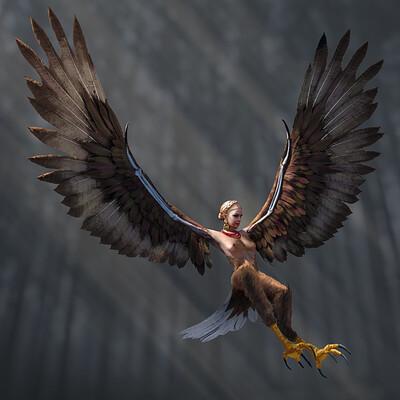 Jasza dobrzanski part1 harpy design