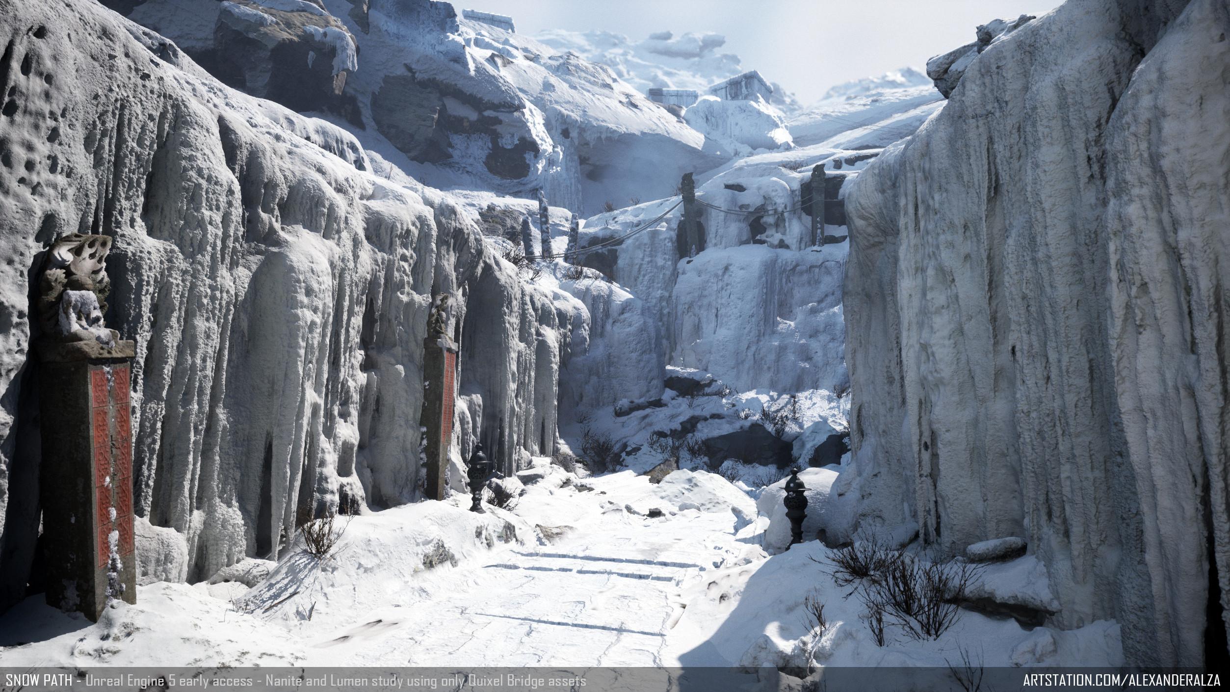 Snow Path - shot 1