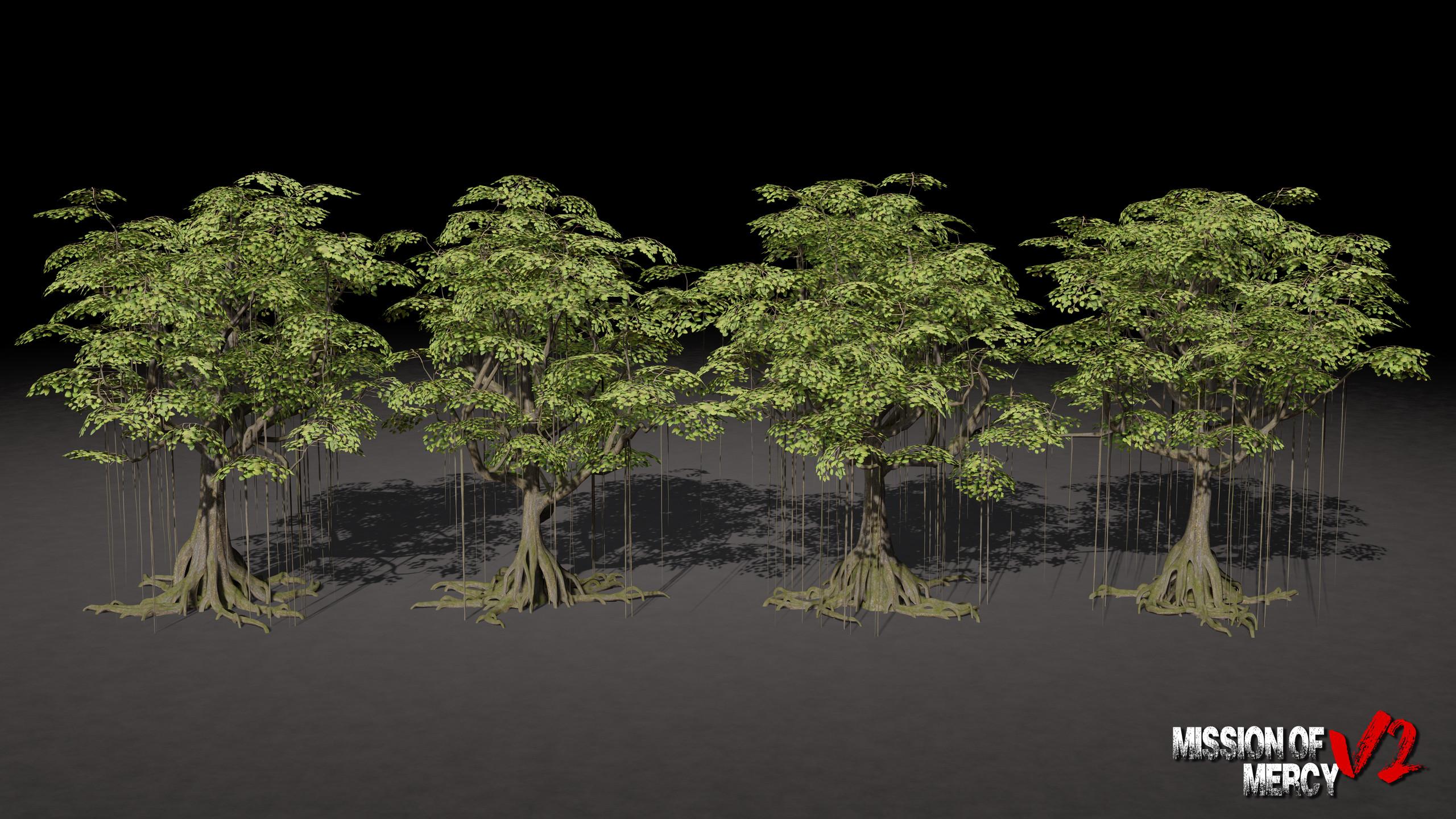 Elder Banyan Tree