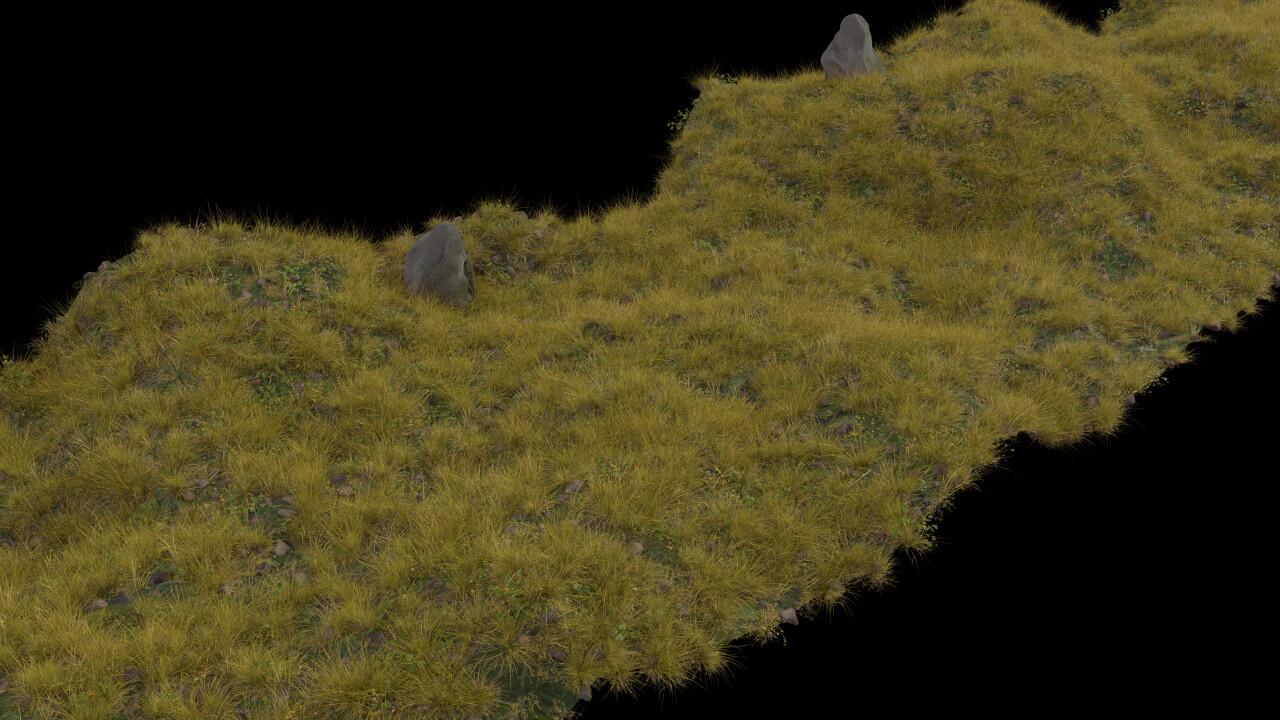 Early terrain render