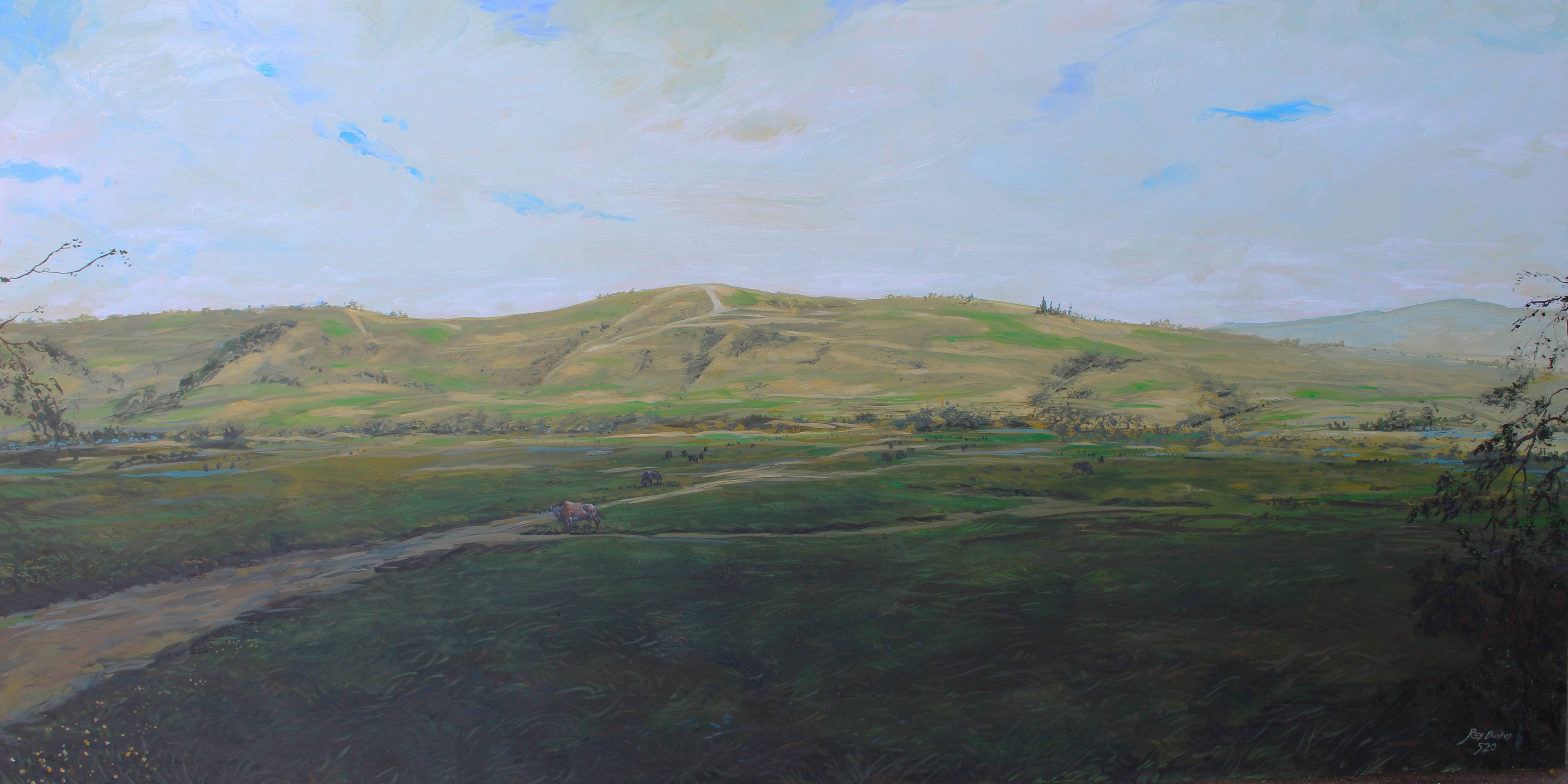 """""""Elephant Hill"""" this is not a Plane Air painting but a painting of the view when we lived in Monterey Hills"""
