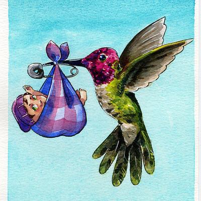Becca hillburn hummingbird