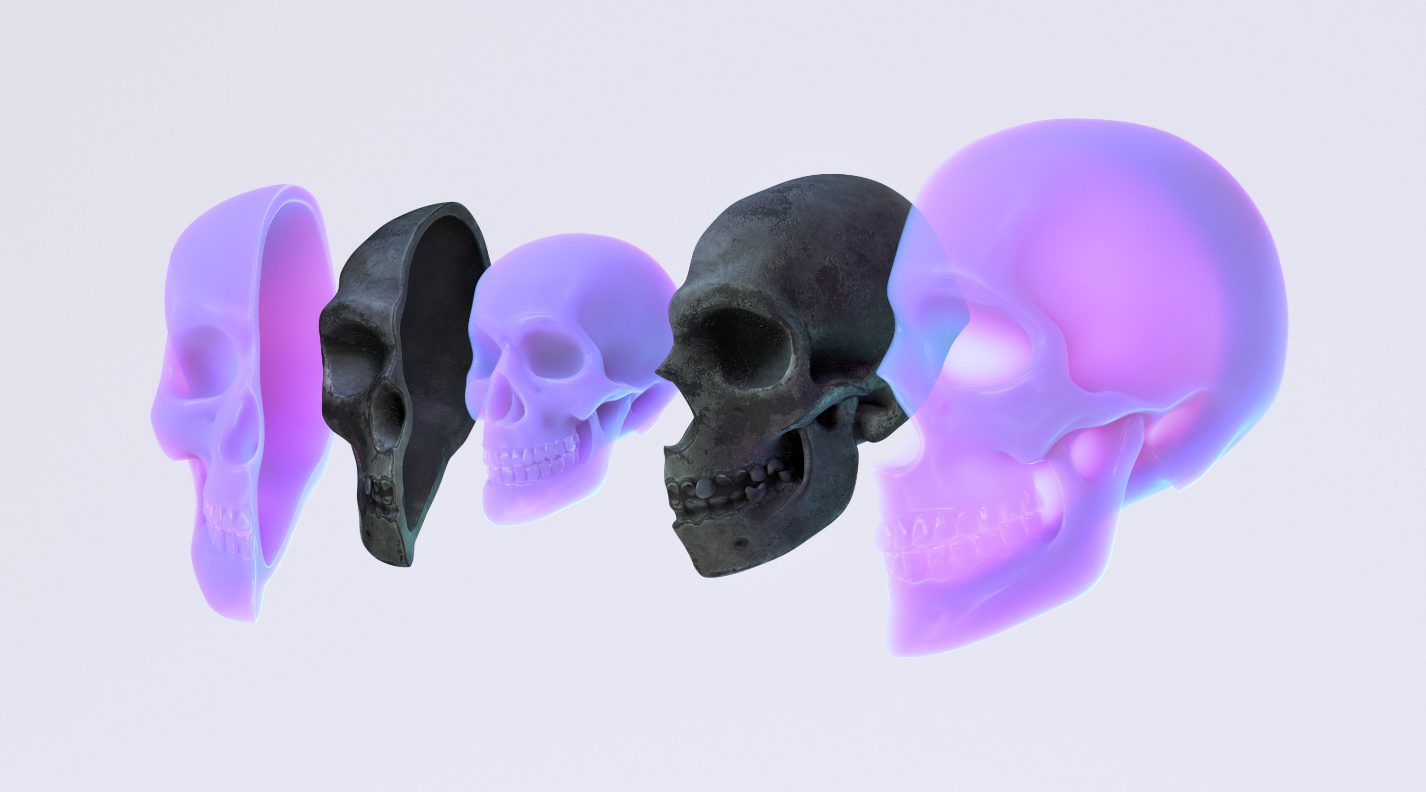 Fossil DNA Reveals New Twists in Modern Human Origins  Read the article: https://tinyurl.com/QMSkulls2019  Custom, modern human & ancient Neanderthal skulls, sculpted from scratch in ZBrush.