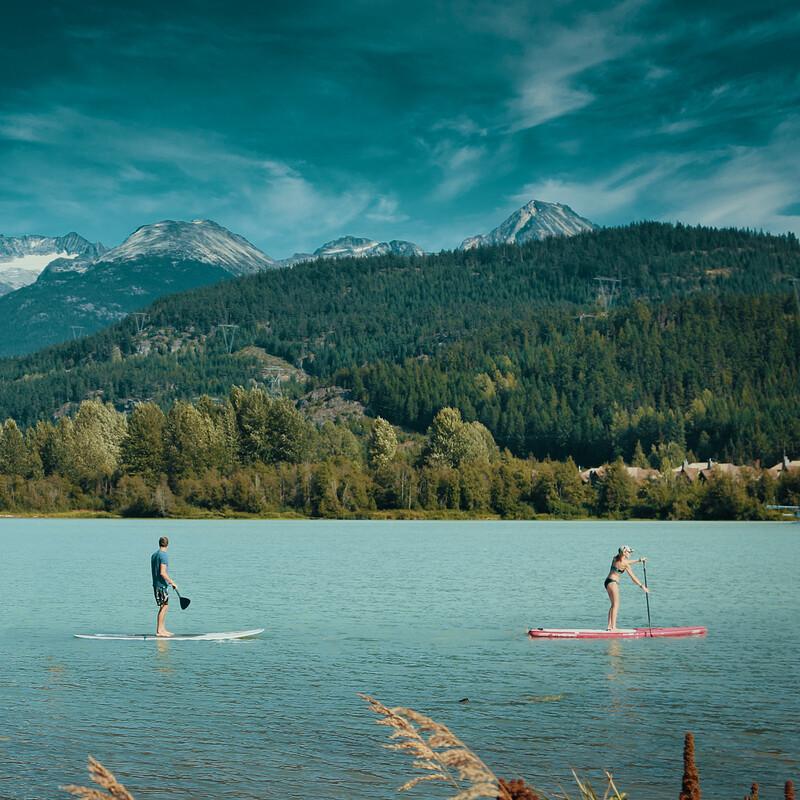 Surfing the Wild