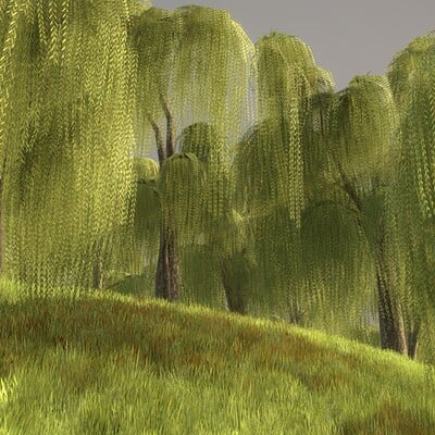 Dennis haupt 3dhaupt silver willow forest willow hill modelled and textured by 3dhaupt in blender 2 93 11