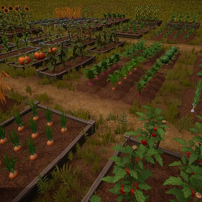 Marcis roze farm crops 05