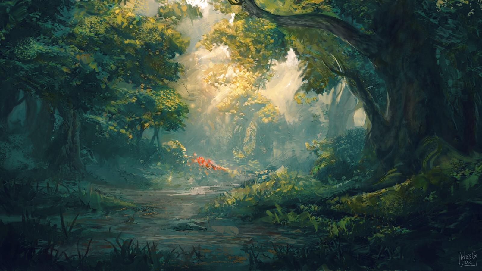 Forest (MTG Portfolio Series)