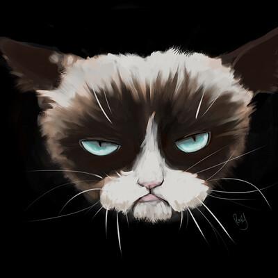 Roxane lapa grumpy cat