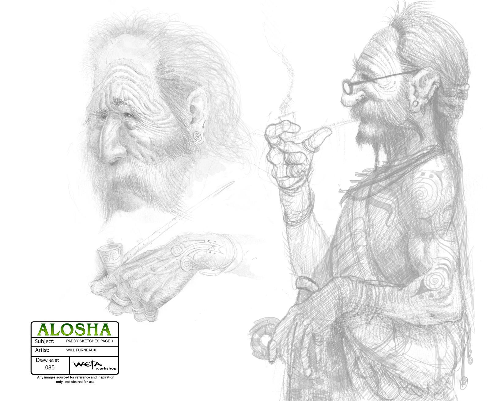 Alosha - Paddy concepts