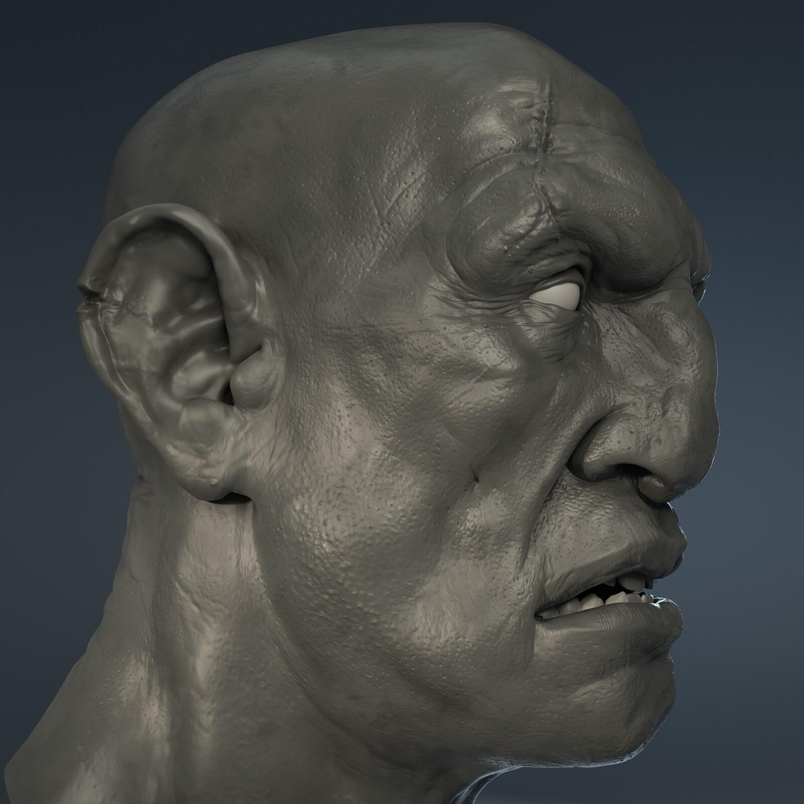 Giant Sculpt