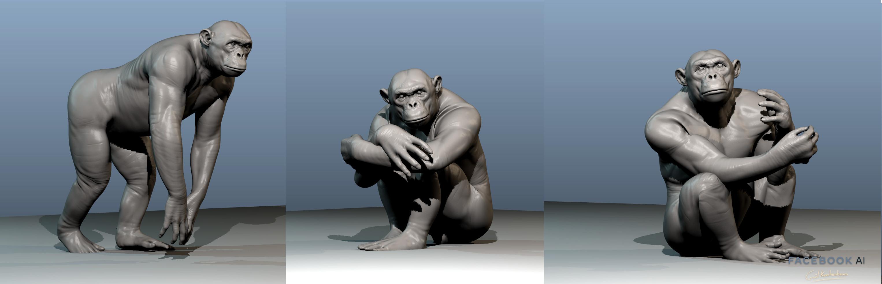 Chimp poses aligned on Data set