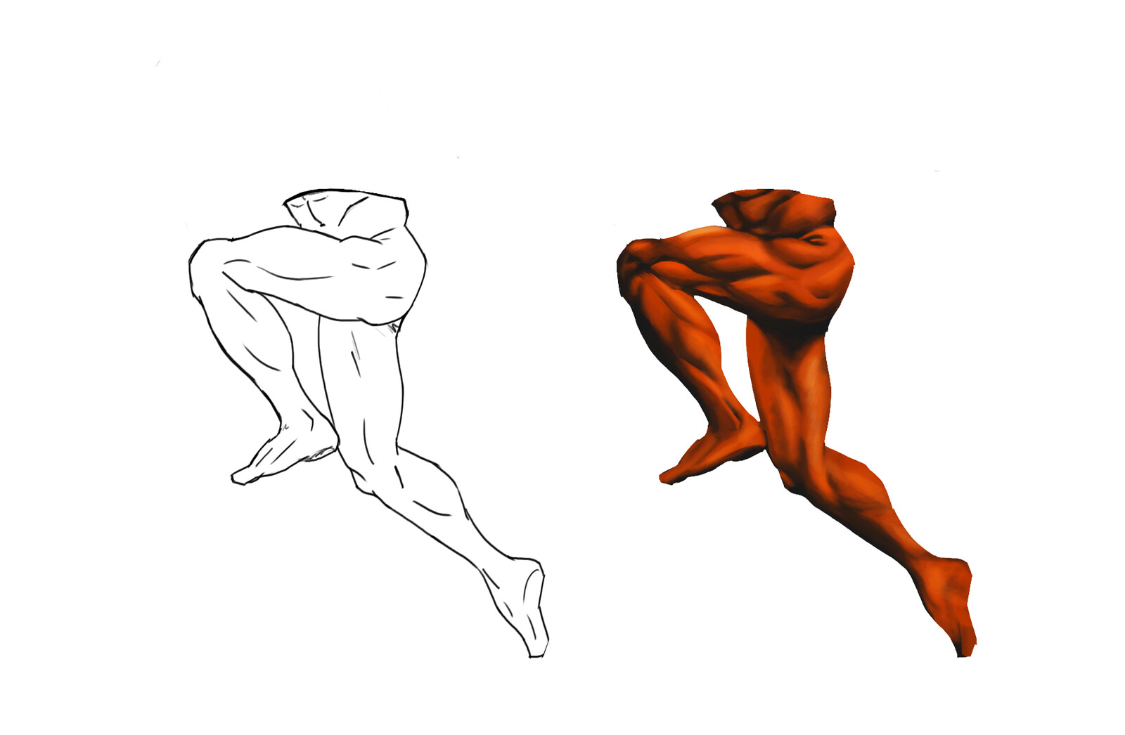 Shading leg muscles