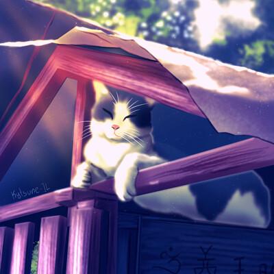 Isabel loo cat on shrine