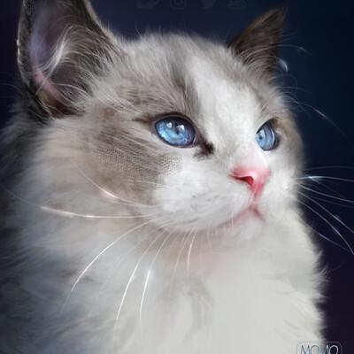 Bela rodrigues blueby portrait web