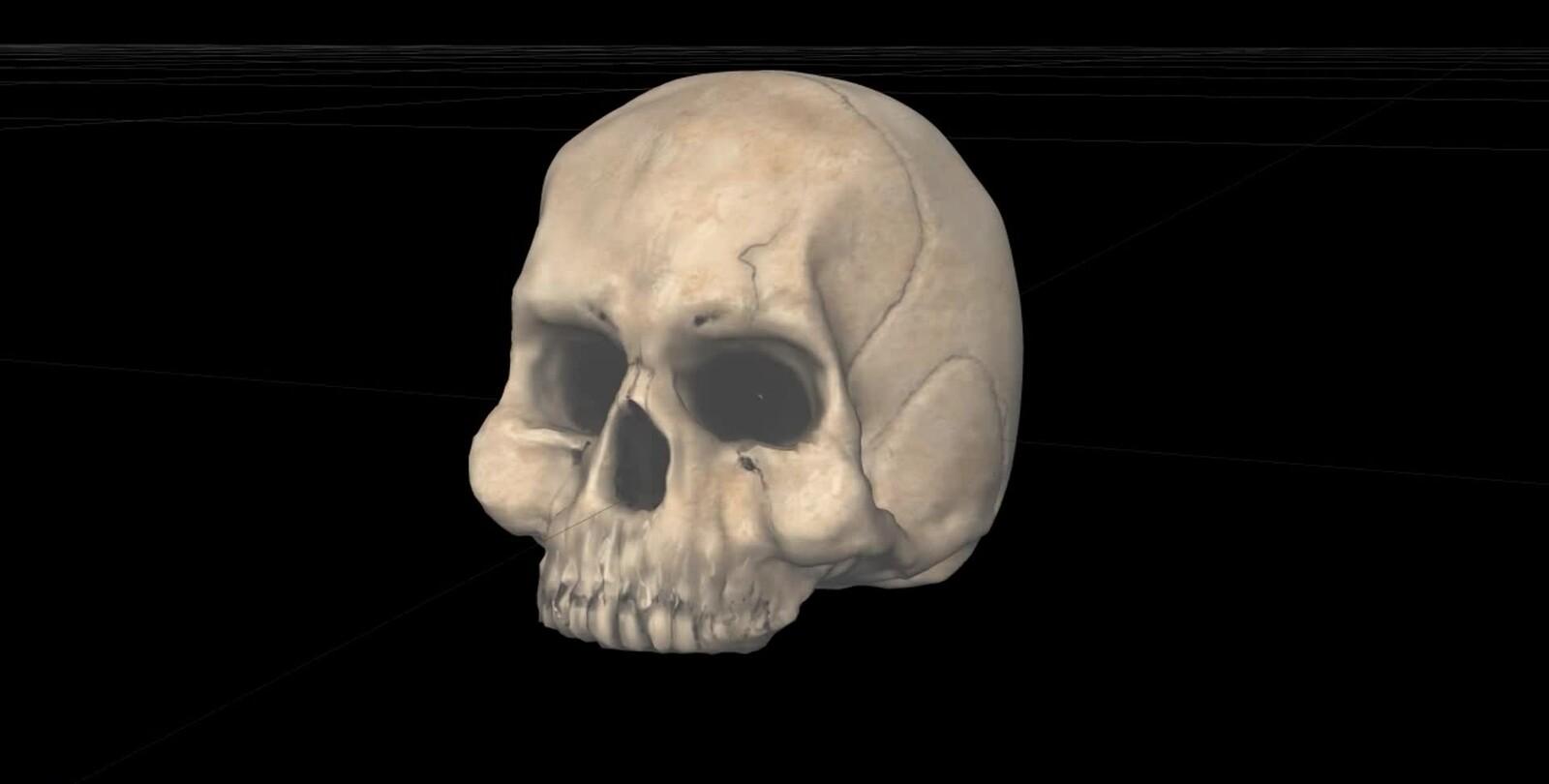 Skull (Blender+Mudbox)