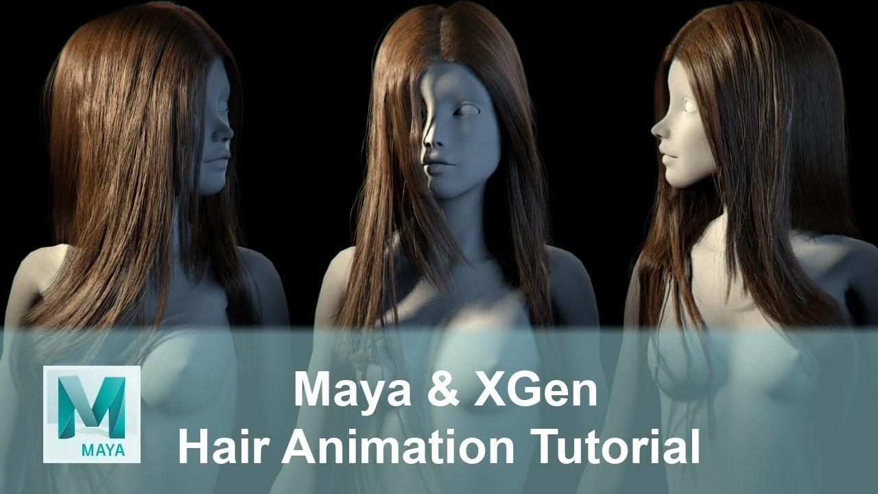 Artstation  Realistic Hair Animation Tutorial Using Maya Xgen, Obaida Hamdi
