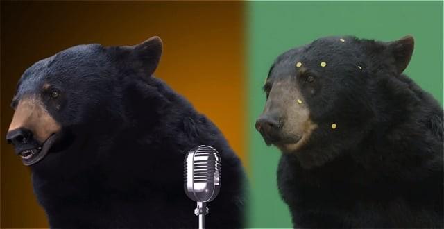 Bear talk sync