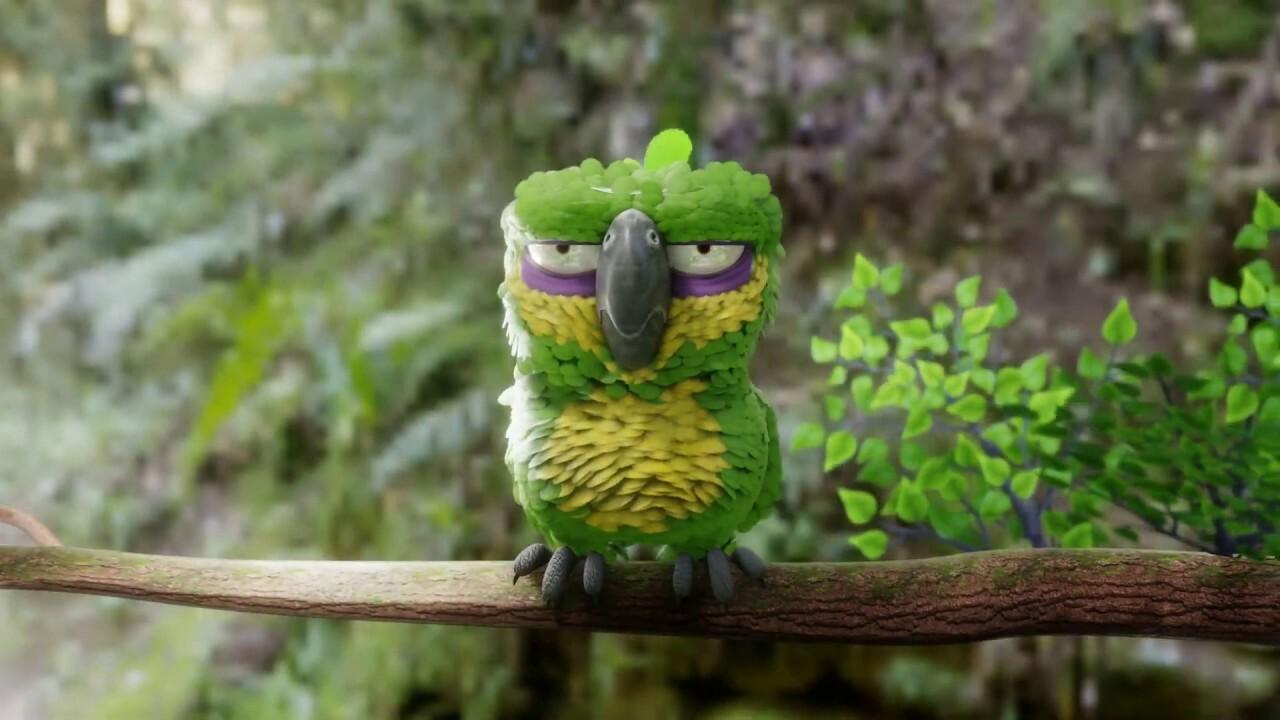 Grumpy parrot - Coop project