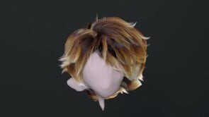 Stylized Hair Groom