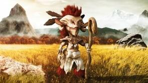 Gnome Video