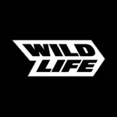 Art Manager at Wildlife Studios