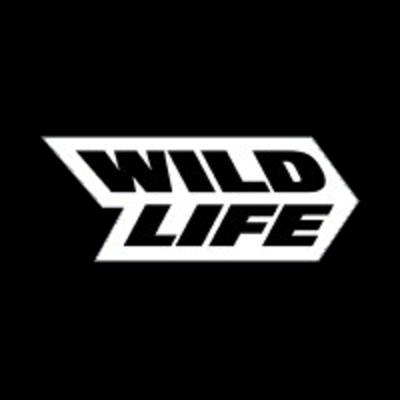 Art Director at Wildlife Studios