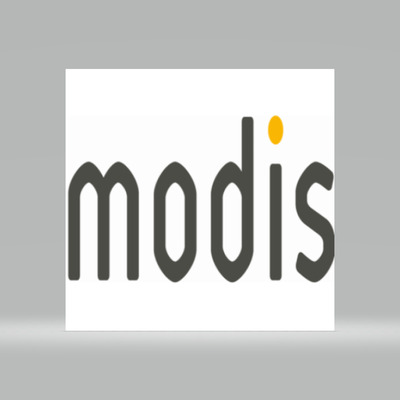 Storyboard Artist at Modis Canada Inc.