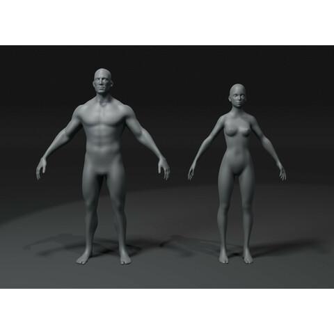 Male and Female Body Base Mesh 3D Model 20k Polygons Bundle