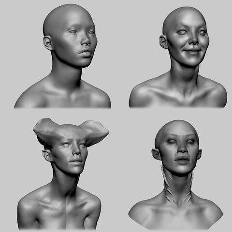 Female Head Bundle