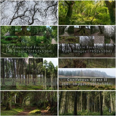 Northern Ireland - Forest Bundle