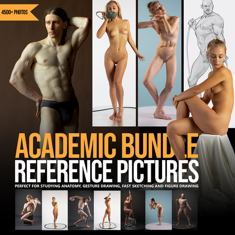 Academic  Reference Pictures Bundle