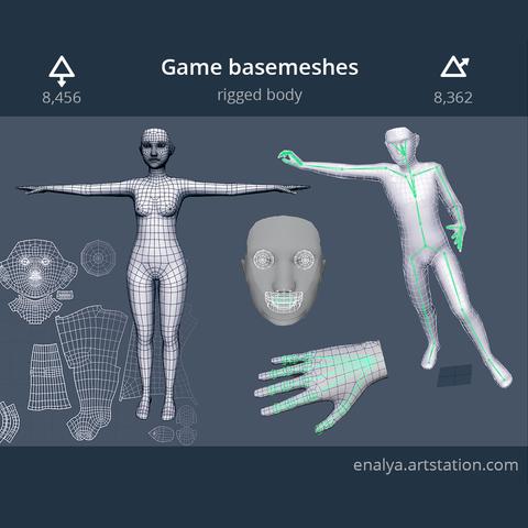 Human Basemeshes - Rigged