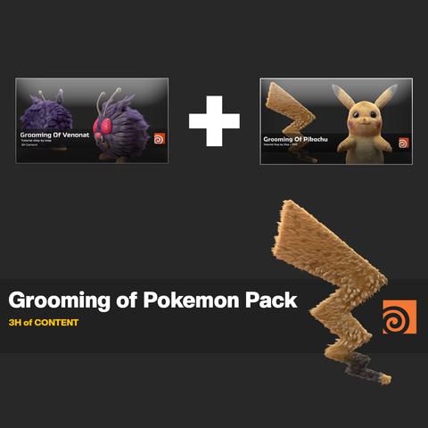 Grooming of Pokemon Pack in Houdini