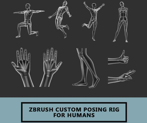 Zbrush Custom Posing Rig Tool For Humans Version 2