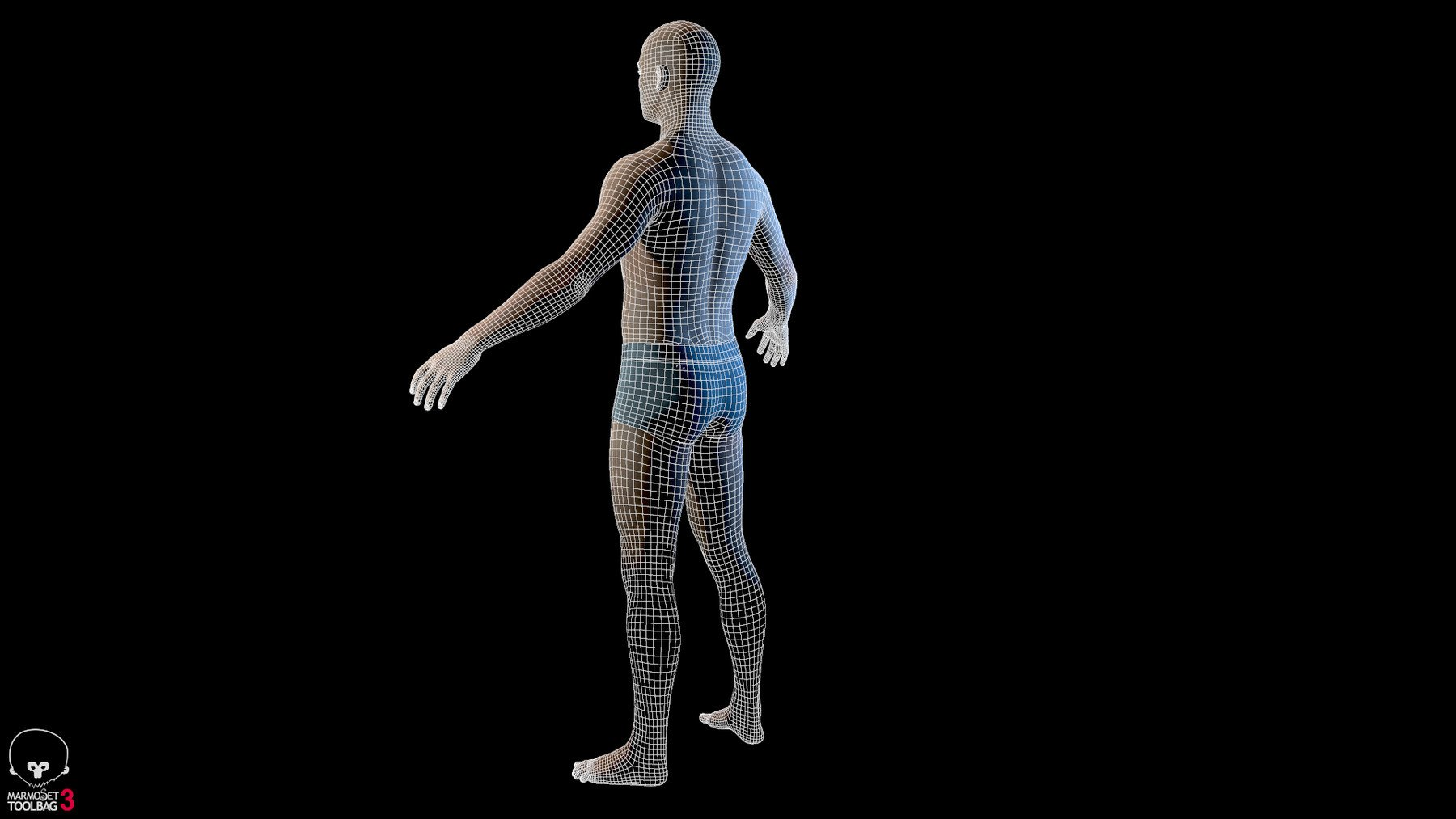 Averagemalebody by alexlashko wireframe 03