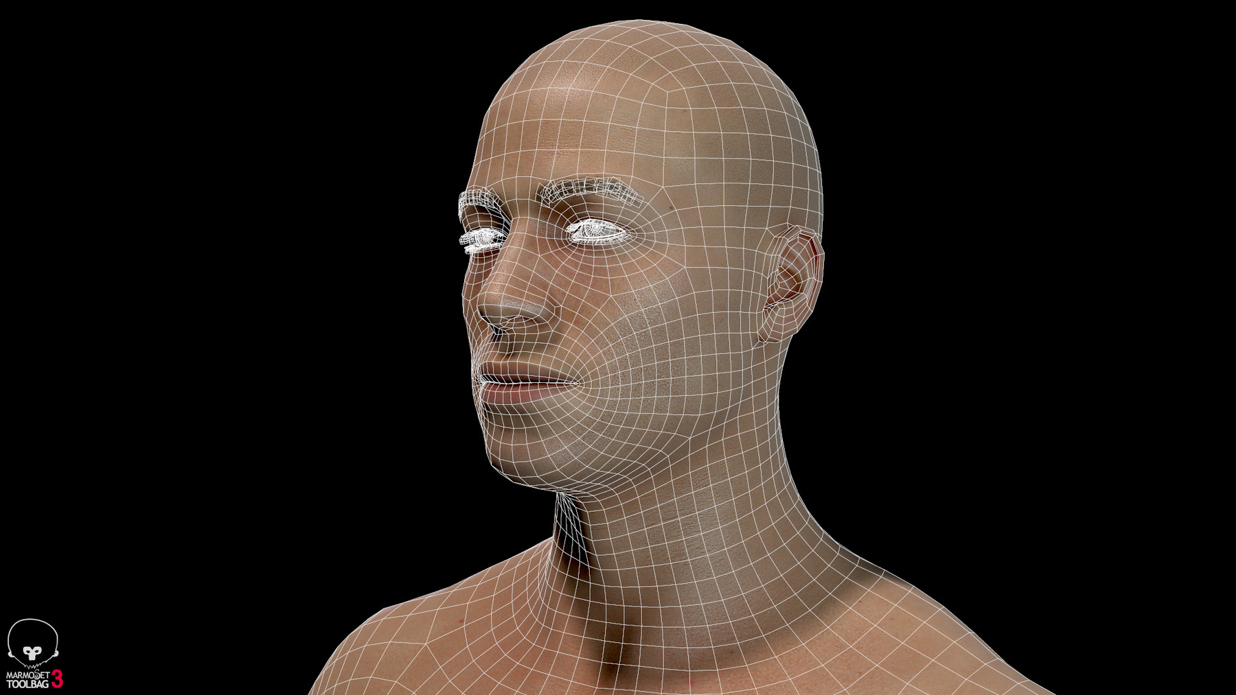 Averagemalebody by alexlashko wireframe 07
