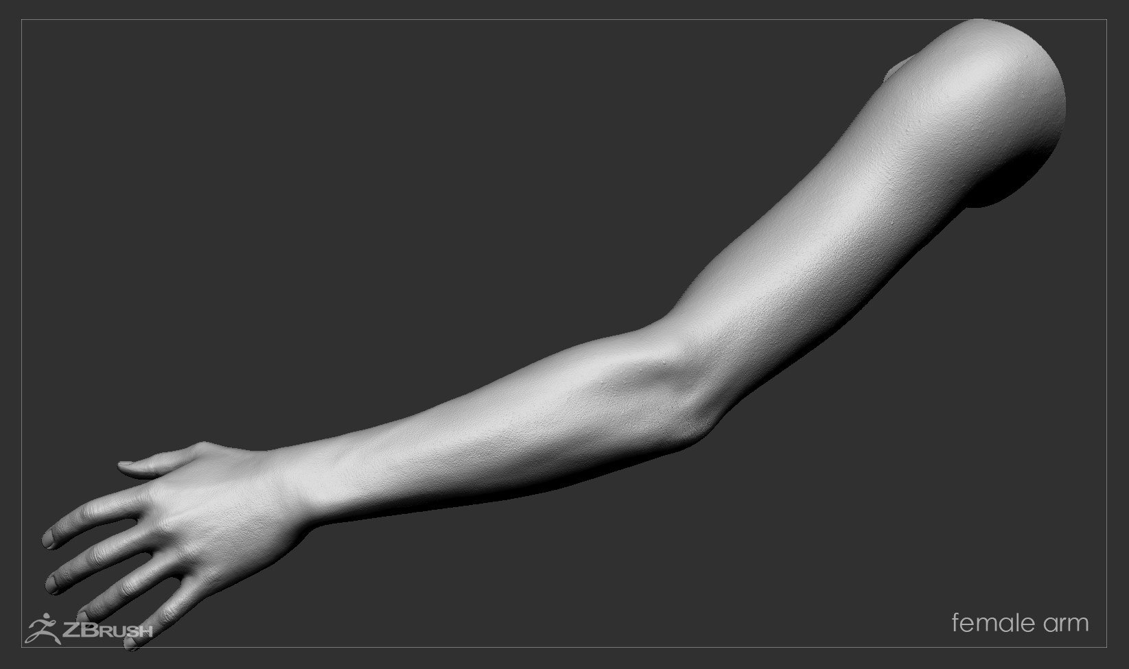 Firstpersonarms zbrush 03
