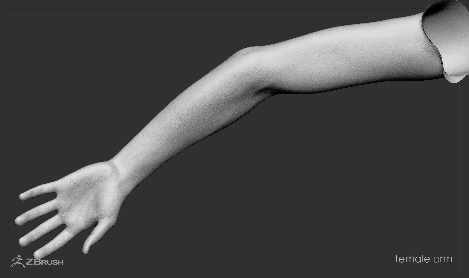 Firstpersonarms zbrush 05