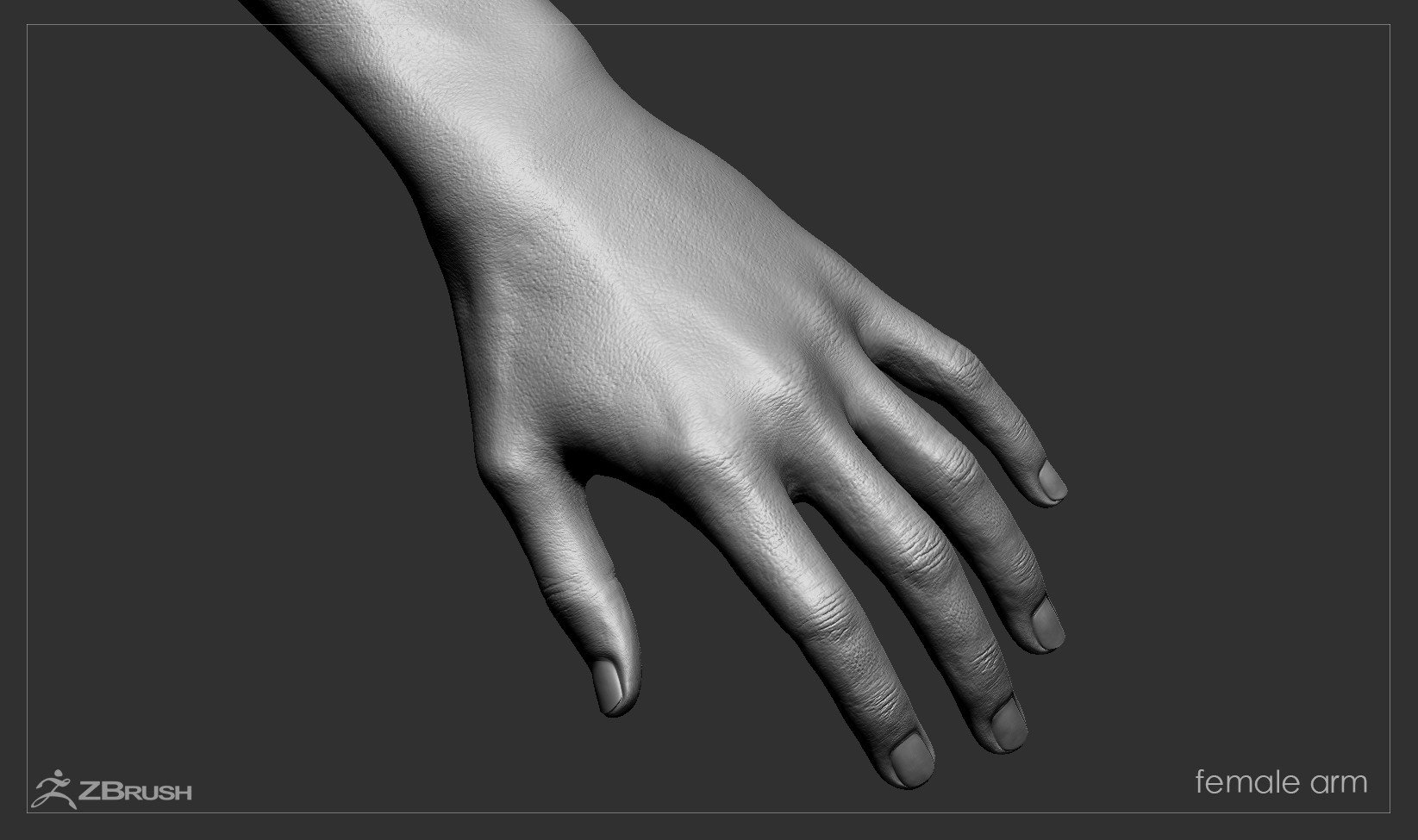 Firstpersonarms zbrush 07
