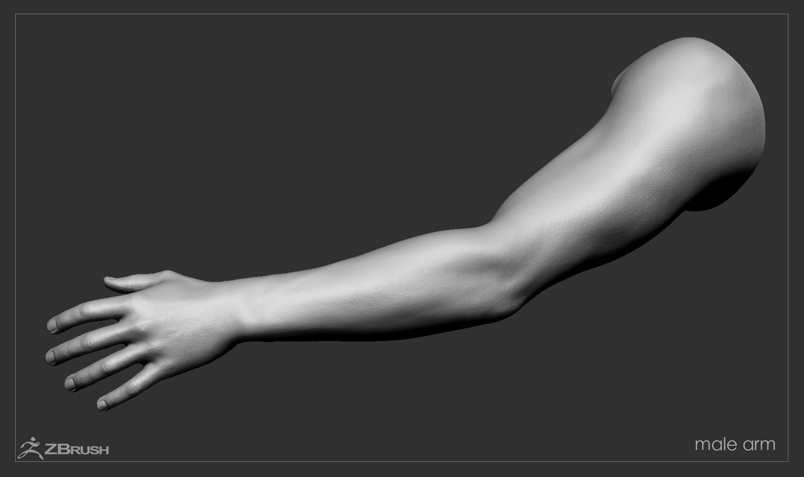 Firstpersonarms zbrush 11