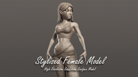 Stylised High Resolution Model