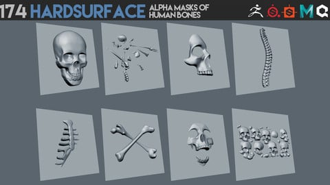 174 Hardsurface alpha masks of human bones