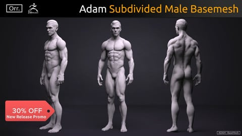 Male Basemesh - Adam