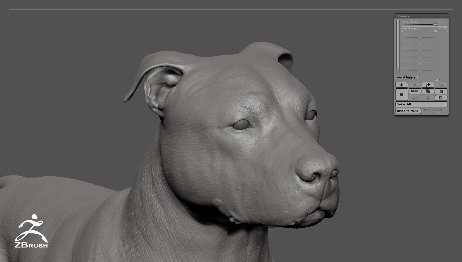 Pitbull by alexlashko zbrush 08
