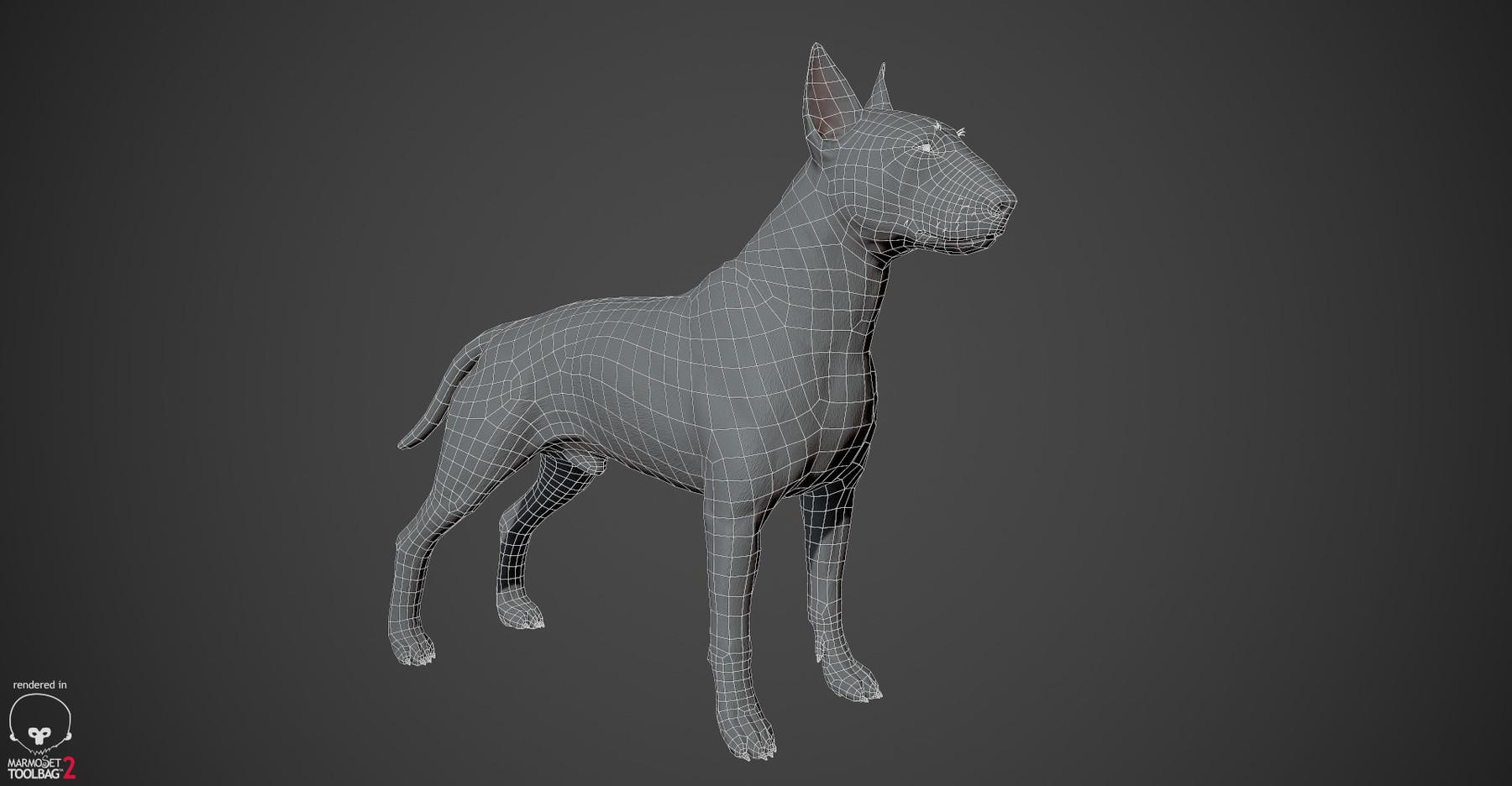Bullterrier wireframe 01