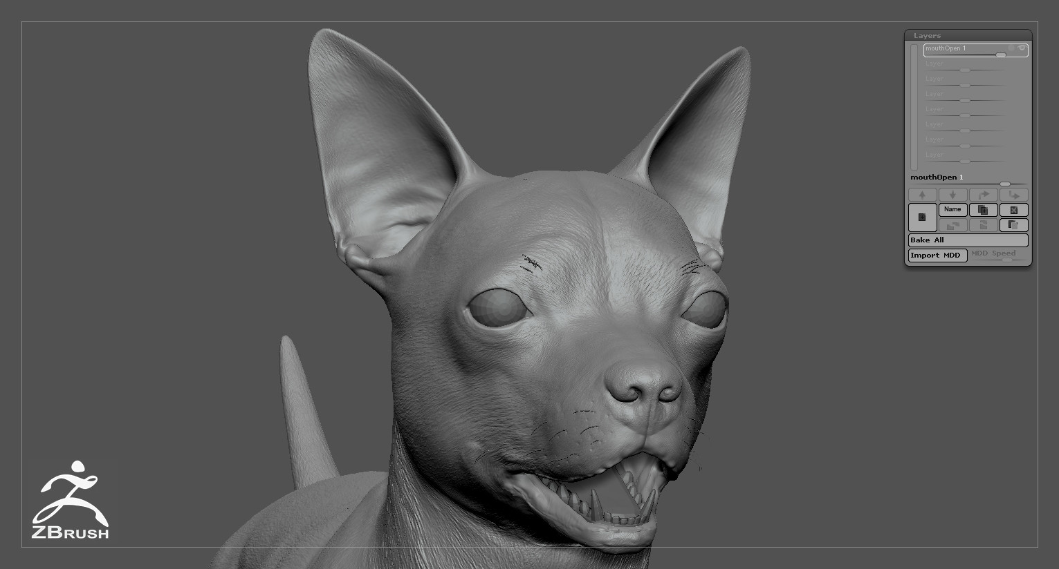 Chihuahua by alexlashko zbrush 07